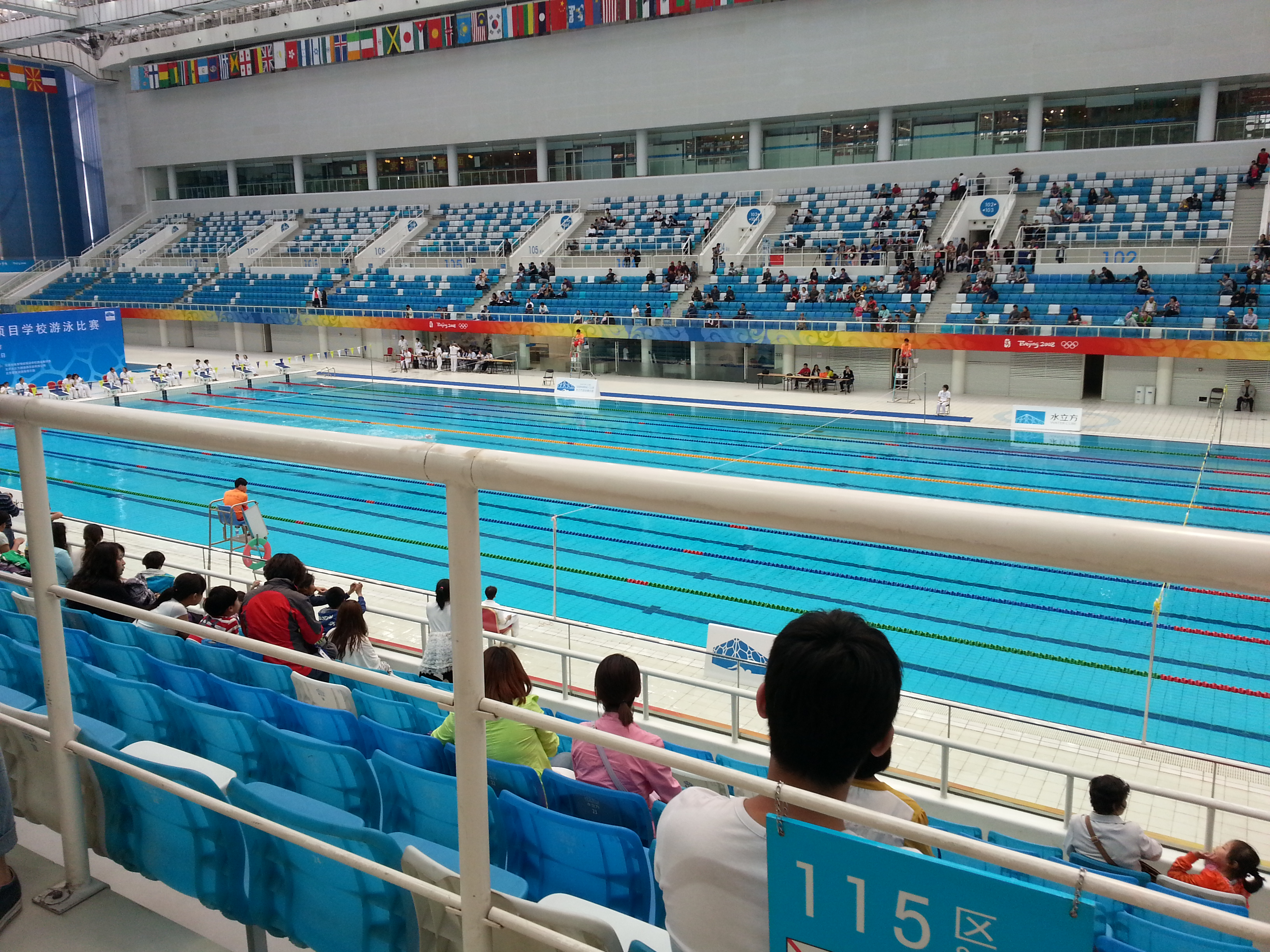 Swimming At The Beijing Olympic Village Lisa Perry Acupuncture